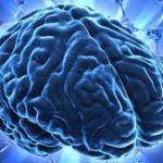 Cos'è la neuroetica: neuroetica e neuroetica clinica