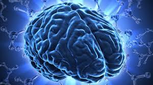 Neuroetica e neuroetica clinica